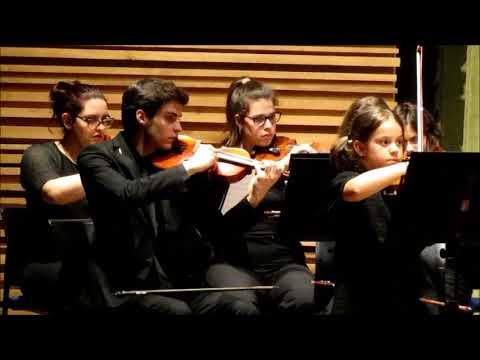 Merate, i solisti dell'Orchestra Agnesi sul palco