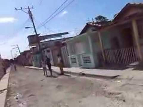Video de Cotorro