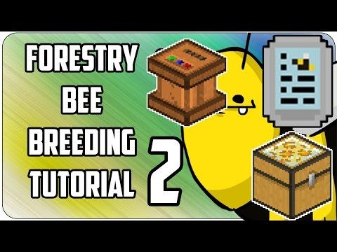 Forestry - BEEBREEDING #2 ▻ Tutorial ◅ Squeezer, Carpenter