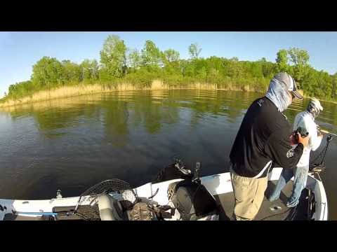 Musky Fishing Adventures – Keyes Outdoors 2015 - Show 1 Fox River Spring Muskies
