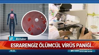 Esrarengiz ölümcül virüs paniği! - Atv Haber 18 Ocak 2020