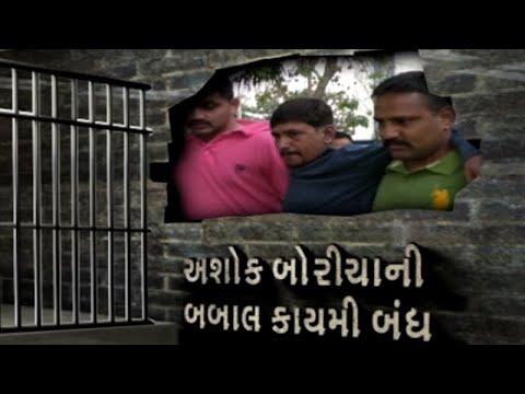 પોલીસ ઉપર ફાયરીંગ કરનાર Amreli જીલ્લાના 18 ગુનામાં વોન્ટેડ અશોક બોરીચા ઝડપાયો   VTV Gujarati