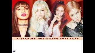 BLACKPINK 'Don't Know What To Do' Karaoke Lyrics Video