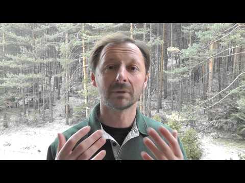 Игорь Незовибатько: отдых в Болгарии зимой