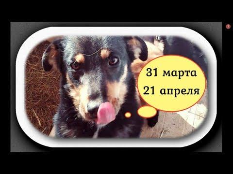 Любим. Надеемся. Снова ждём на Киевском!/We Love! We Hope!