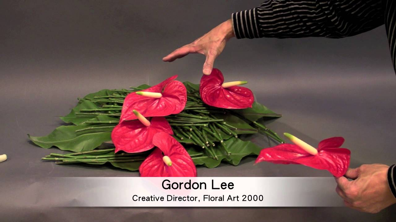 R1 B21 How To Make Flower Arrangement With Anthuriums