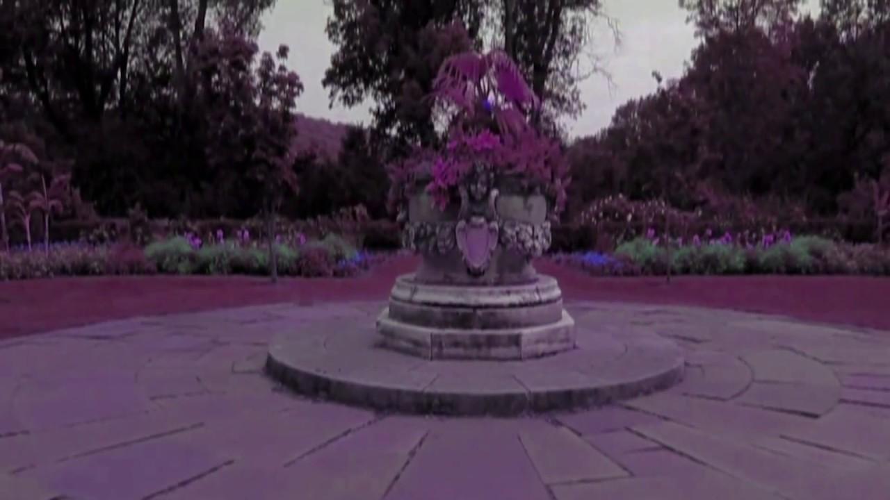En el Jardín de mis Amores\'\' Gloria Estefan & Alejandro Fernández ...