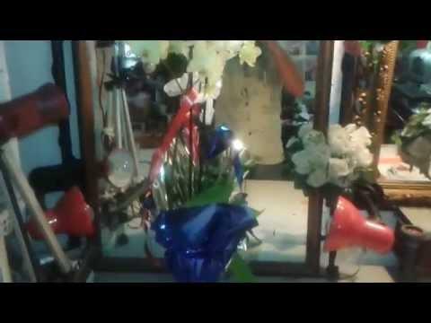 Envio de orquidea a domicilio blanca