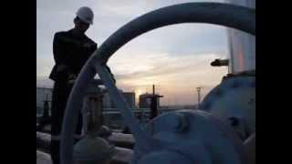 Международный нефтегазовый бизнес в ПГНИУ