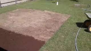 Фото Как восстановить газон