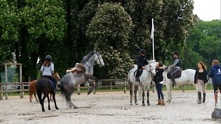 Happiness ♡ - Haras de Jardy [ Horse riding falls ] thumbnail