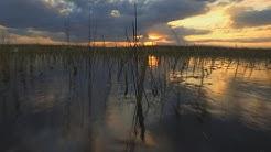 Climate change: Florida faces rising sea levels