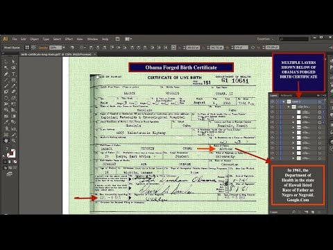 Obama Forged Birth Certificate-Enlarge for Maximum Viewing