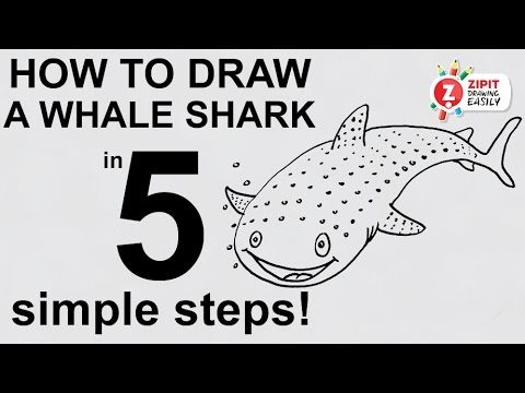 How To Draw A Whale Shark Youtube