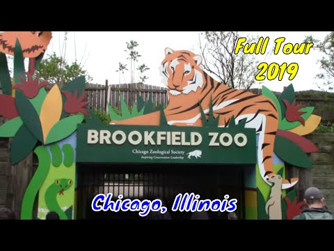 Brookfield Zoo Full Tour - Chicago, Illinois