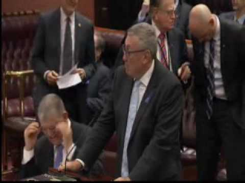 [Legislative Council] QWN - City of Sydney Council Election
