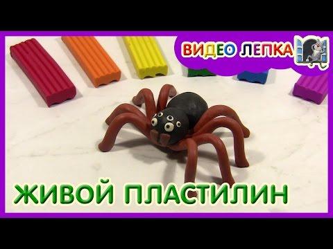 Развивающее видео для детей. Маша, Ксюша и пластилин. Лепка из пластилина. Лепим прическу для куклы.