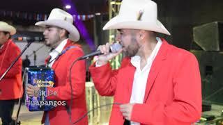 La Dinastia Hernandez En Vivo Desde Ranchito De Coronados ( Mix De Huapangos )