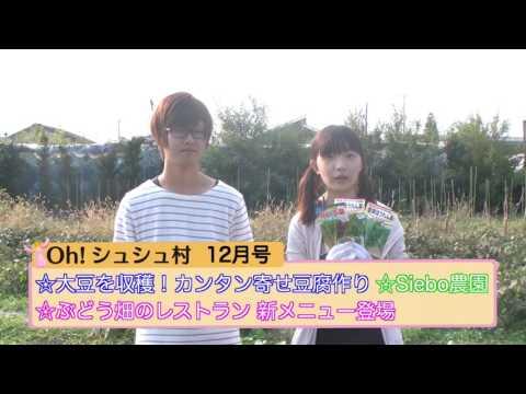 シュシュ12月号 番宣 【おおむら夢ファーム シュシュ×映像制作団体Siebo】