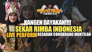 SEKAR RIMBA INDONESIA LIVE PERFORM BESARAN CONGKRANG MUNTILAN