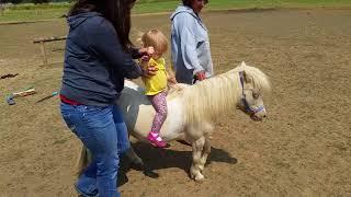 Madison takes a ride