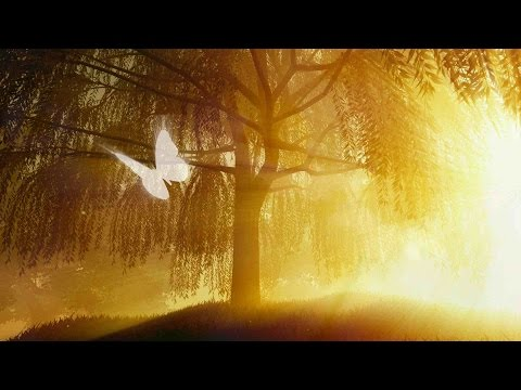 "Peaceful Music, Relaxing Music, Instrumental Music, ""Heaven's Light"" by Tim Janis"