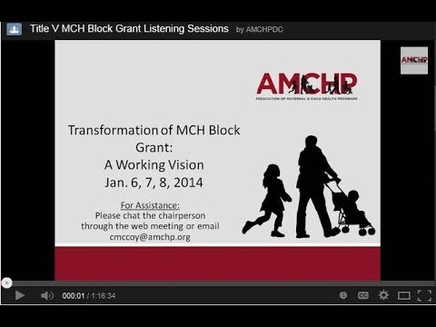 AMCHP Webinar: Transformation of the Title V MCH Services Block Grant - January 8, 2014