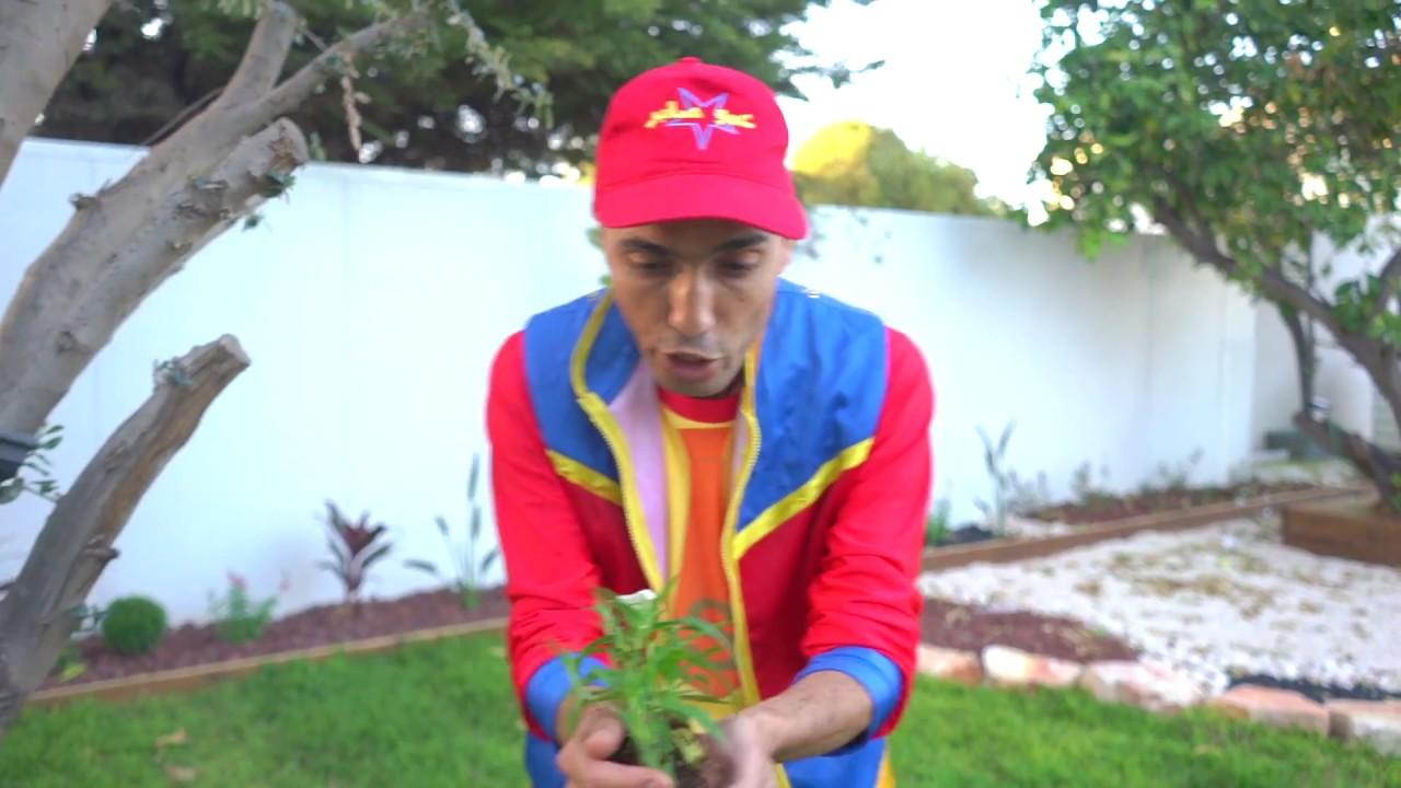 عمو صابر غرس النباتات - amo saber planting flower