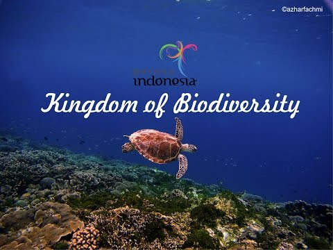 Pesona Indonesia - Kingdom of Biodiversity