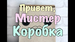Привет, МИСТЕР КОРОБКА