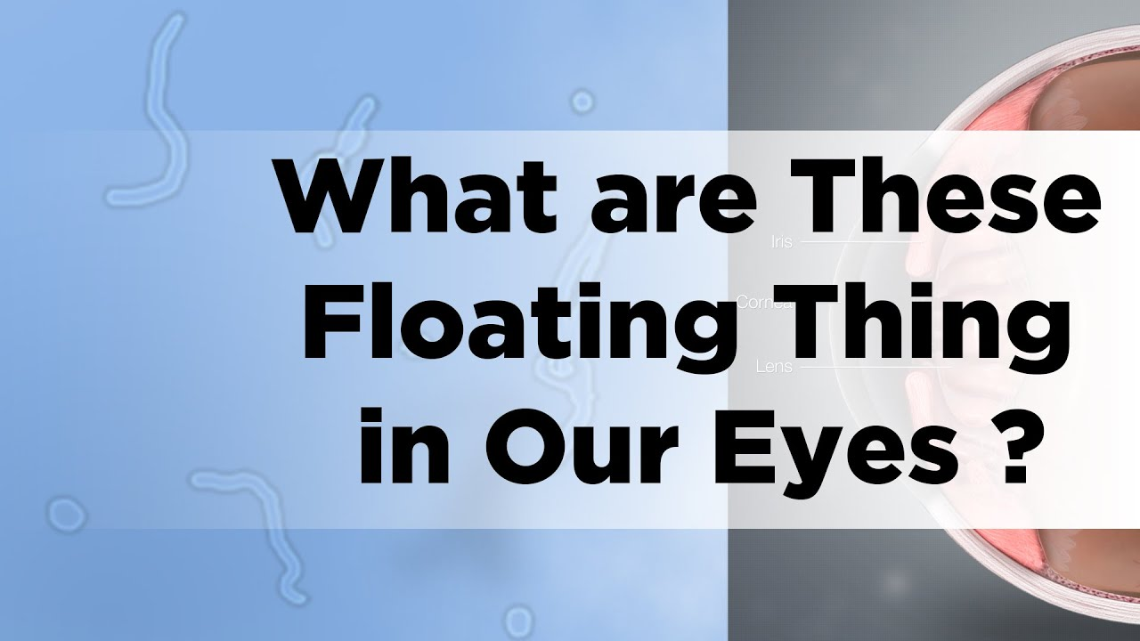 What are These Floating Thing in Our Eyes - Gyan In a Nutshell