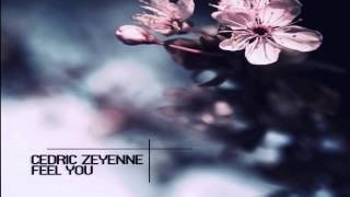 Cedric Zeyenne - Feel You (Original Mix)