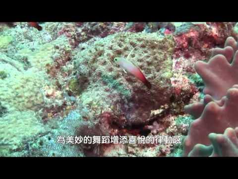 北探外環礁