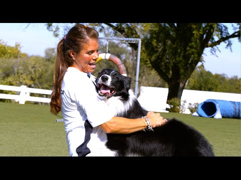 Behind The Scenes - World's Greatest Dogs in Slow Motion