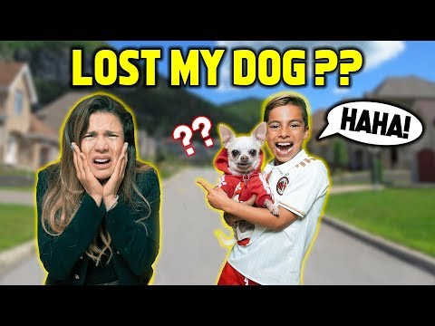 I LOST MY MOM'S DOG!! *BIG TROUBLE* | The Royalty Family