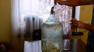 Рецепт домашней ХРЕНОВУХИ