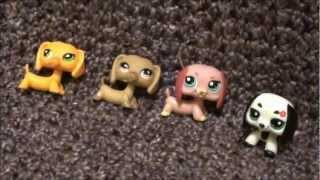 My Littlest Pet Shop Dachshund Collection