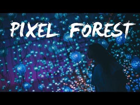 Pipilotti Rist - Pixel Forest- Museum of Fine Arts Houston