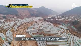 어서 와~ 한재골은 처음이지? 경북 청도 미나리 성지 공개★