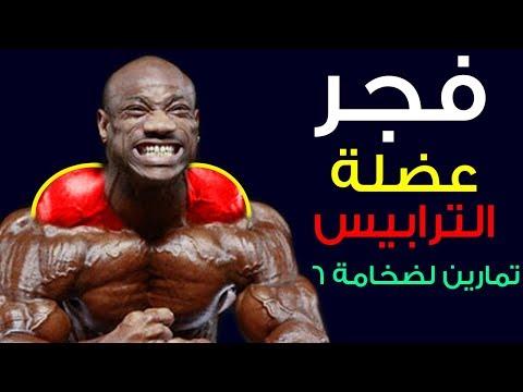 فجر عضلة الترابيس 6 تمارين لضخامة عضلة الترباس