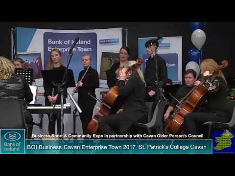 Sue King and The Cavan Sinfonia Orchestra at the Bank of Ireland Business Expo 2017