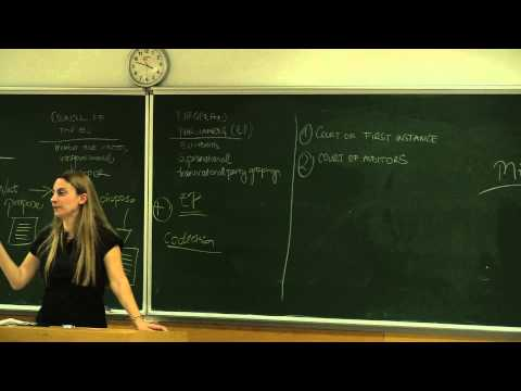 IR477 - Law and Institutions of the European Union - Lecture 4.2