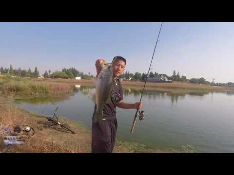 Fresno Flood Basin Fishing