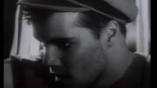 Axel Bauer - CARGO (Official video) YouTube Videos