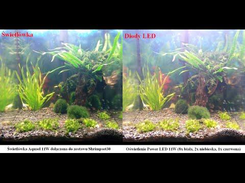 Mn Techpl 28 Oświetlenie Power Led Dla Krewetkarium 30l Cz3