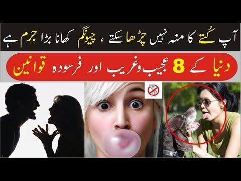 8 Interesting Laws Around The World   Urdu/Hindi
