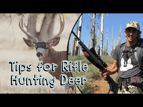 HOW TO RIFLE HUNT Deer In California! Tips For A Successful Rifle Hunting Season || CACCIA OUTDOORS