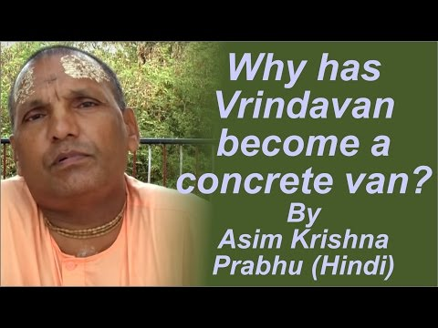 Why has Vrindavan become a concrete van? by Asim Krishna Prabhu (Hindi)