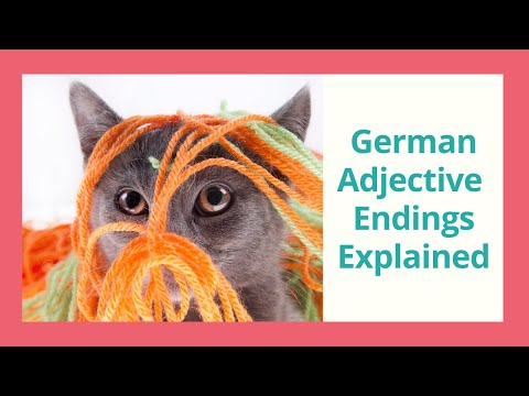 Master the German Adjective Endings in under 3 Minutes