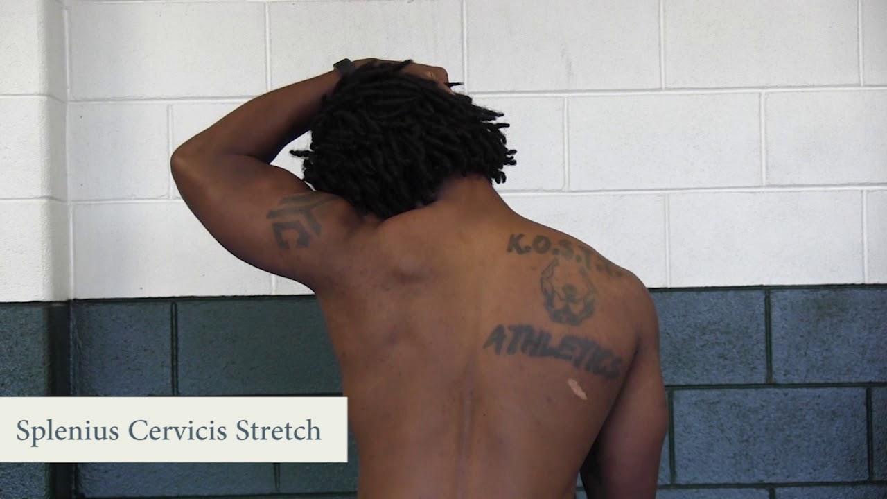 Splenius Capitis Stretch | www.topsimages.com